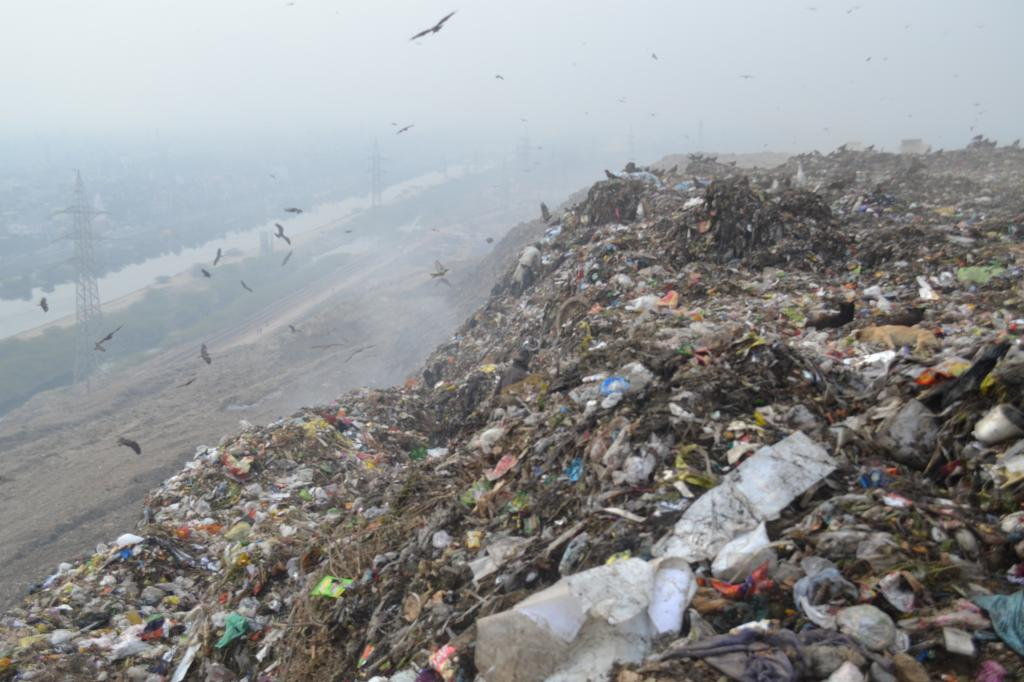 The garbage hill is over 50 metre high (Credit Richa Agarwal/CSE)