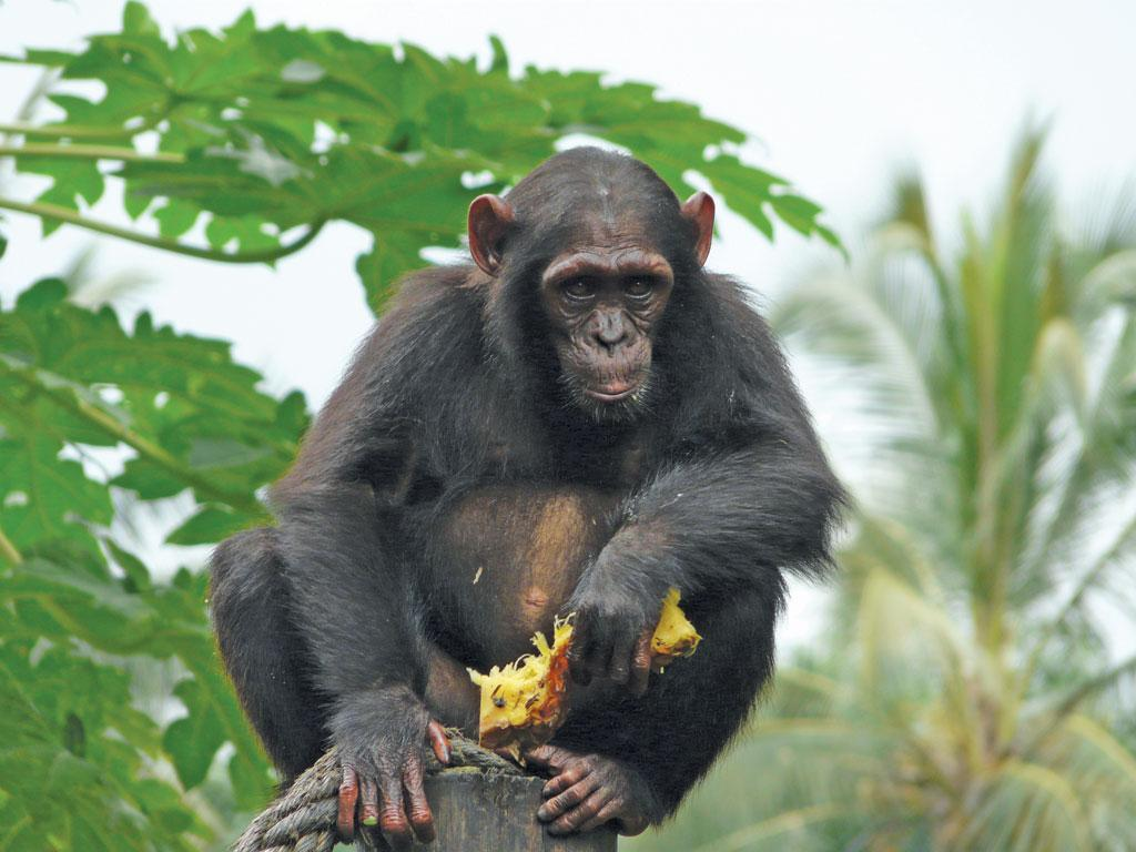 Less than