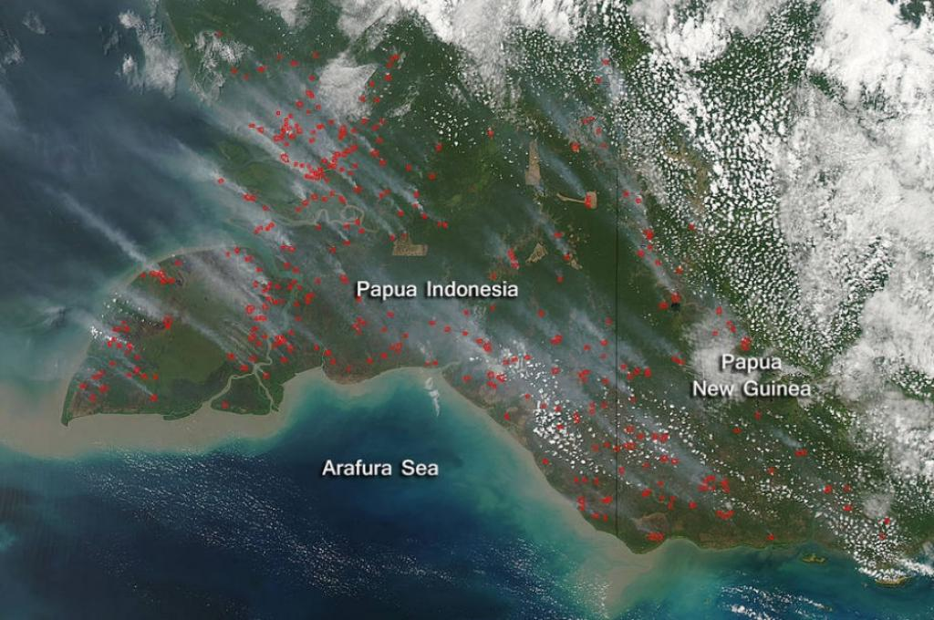 Actively burning areas with significant smoke rising from these areas as detected by a satellite on September 24, 2015. Credit: NASA