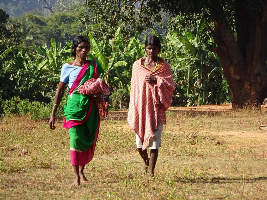 India is only delaying an opportunity to establish a rights-based, democratic and people-oriented conservation environment. Credit: Shruti Agarwal / CSE