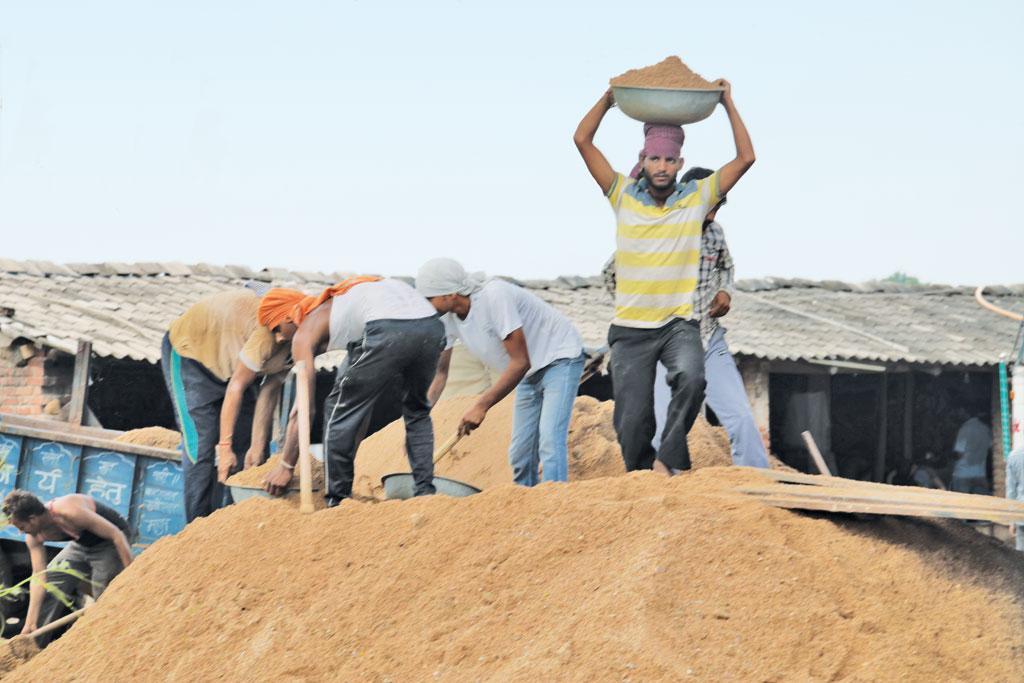 भिंड मध्य प्रदेश का प्रमुख रेत खनन केंद्र है (विकास चौधरी / सीएसई)