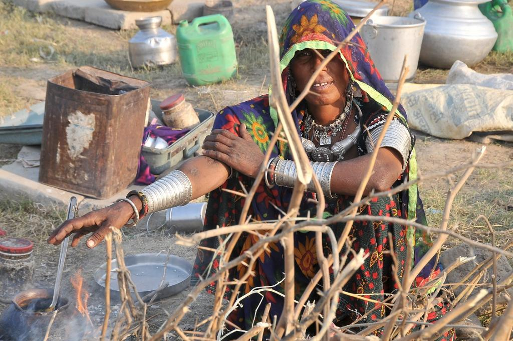 People residing in tribal and forested areas are likely to remain poor forever, fomenting violent conflicts in future. Credit: Meeta Ahlawat / CSE