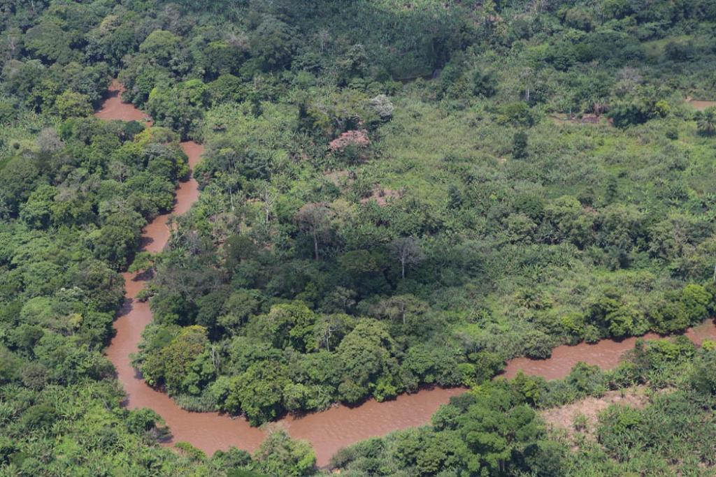 The Congo rainforest is second in size only to the Amazon (Credit: MONUSCO/Myriam Asmani)