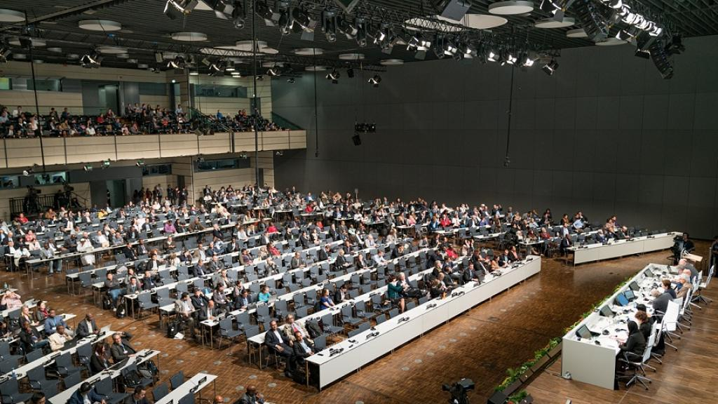 Over the course of this year's session, developing nations have repeatedly stressed that it is imperative to fulfil pre-2020 commitment.Credit: UNClimatechange / Flickr