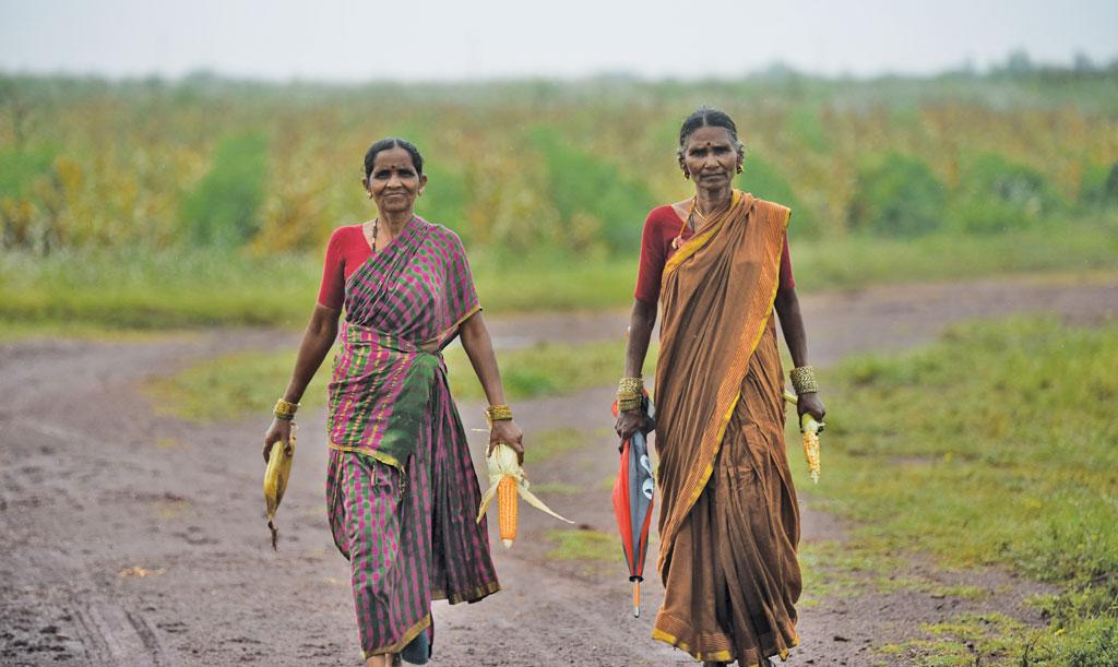Samamman and Manikamma say permaculture has made farming possible in the dry, unproductive laterite soil of Bidekanne village in Telangana