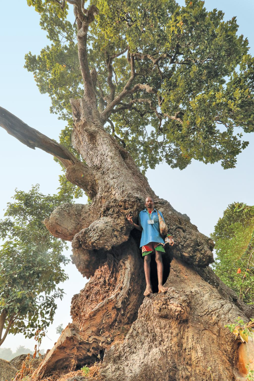 An ancient