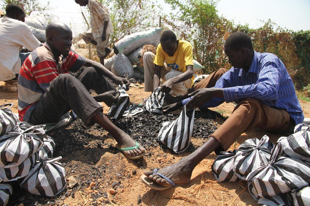 Land degradation and droughts have forced several farming communities in Nigeria to abandon farming and shift to the lucrative trade of charcoal production (Photo: Wikimedia Foundation)