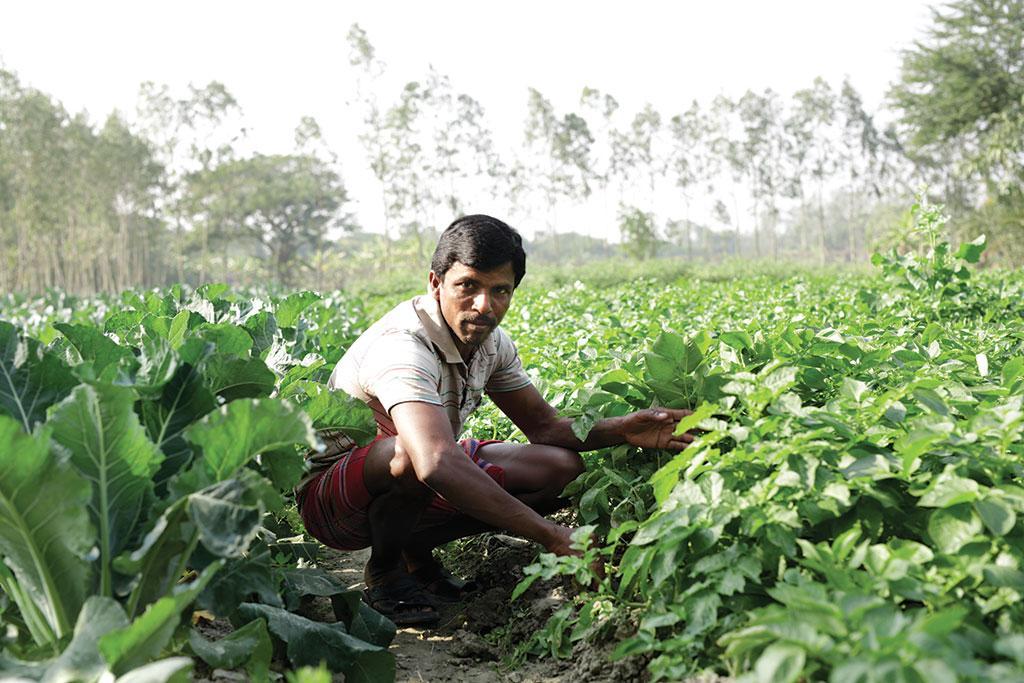 Tarun Haldar, Bongheri village South 24 Parganas, West Bengal