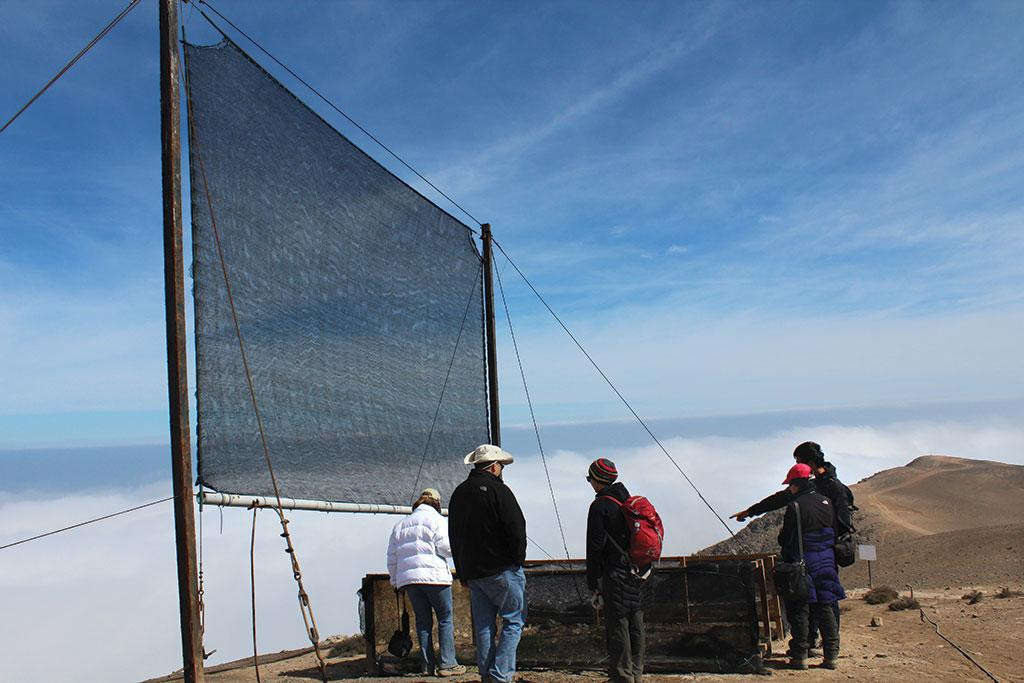 Water-scarce residents of Chile use fog net to capture humidity and turn it into potable water (Credit: Nicole Saffie)