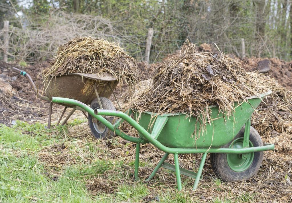 In the Indian context, where organised farm waste management methods are missing, approaches such as biogas generation could be introduced as initial measures over land application. Credit: Pixabay/sabinevanerp