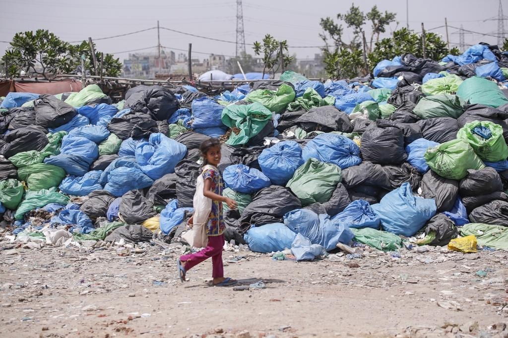 Shaheen Bagh, a neighbourhood in South Delhi District of Delhi along the banks of Yamuna, is home to a significant number of Rohingya families who mainly work as labourers and waste segregators, earning their livelihood by sifting through heaps of medical waste