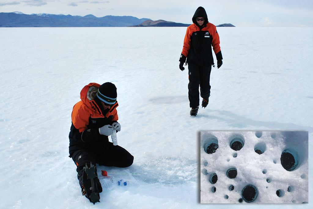 Scientists collecting samples of ice-covered cryoconite holes in Antarctica  (inset) a close-up of the dust holes (Courtesy: NERC)