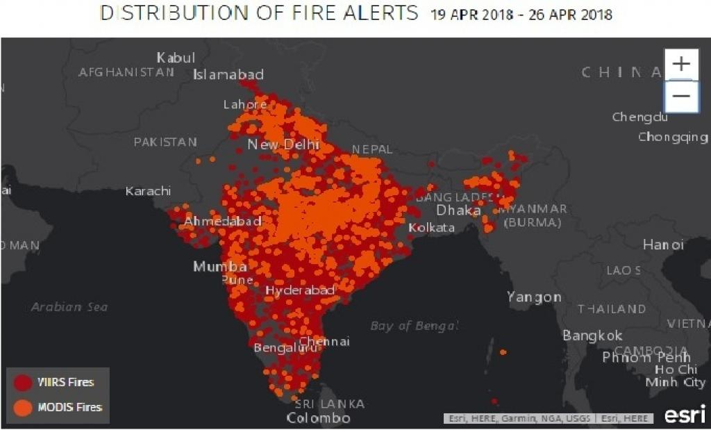 Forest Fires In India Increased By 125 Per Cent In Last Two Years