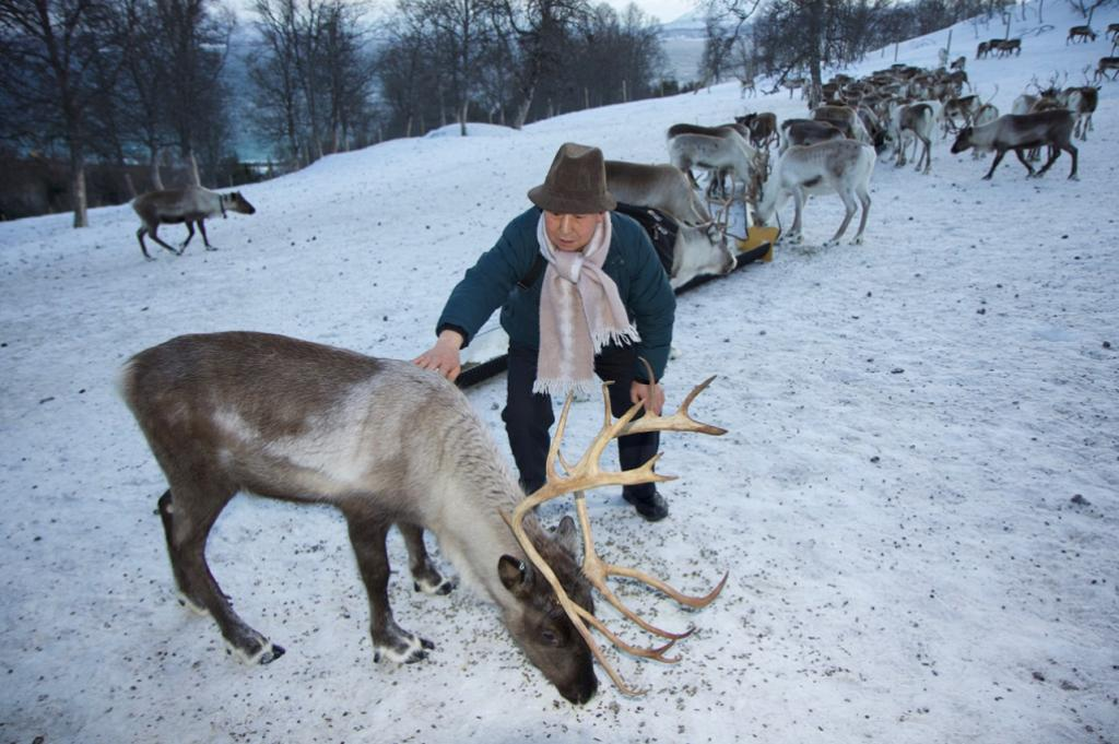 Changlin Xu (Yak herder from the Tibetan Autonomous Region) meets his first reindeer. Credit: ICIMOD
