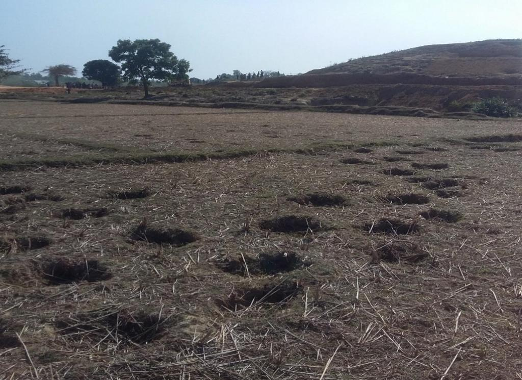 Elephant tracks near camp 3. Credit: IUCN/M.A. Motaleb