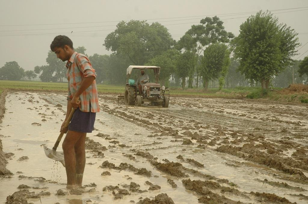 Bihar CM Nitish Kumar has, on several occasions, criticised the PMFBY, arguing that it benefits the insurance companies more than the farmers. Credit: Agnimirh Basu