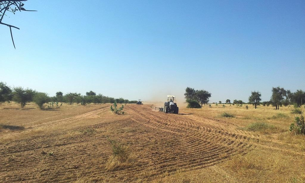 45 per cent of the food consumed globally comes from the dryland areas in the world. Credit: CDKNetwork / Flickr