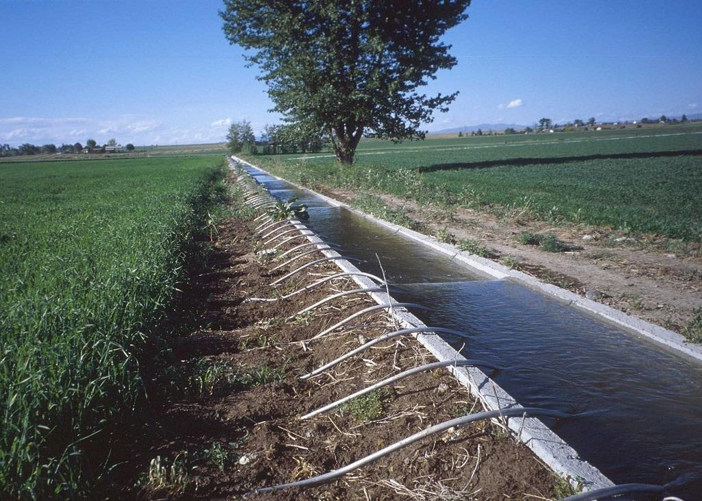 Globally, the area equipped for irrigation almost doubled from 164 million hectares to 324 million hectares in 50 years. Credit: Wikimedia Commons