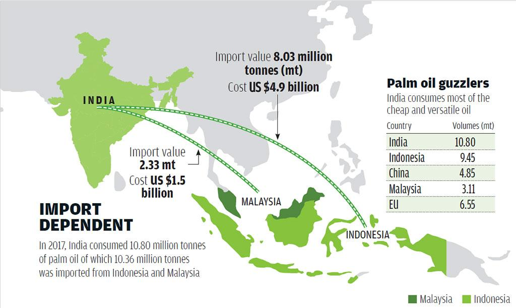 Image result for palm oil exports by country