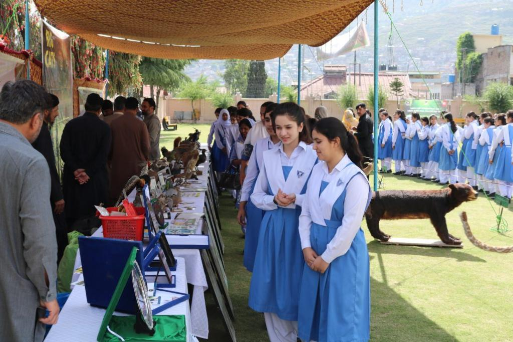 Students of Presentation Convent School Peshawar look at stuffed wild species displayed during their visit to the Wildlife Department of Khyber Pakhtukhwa as part of awareness raising field tour. Credit: Adeel Saeed