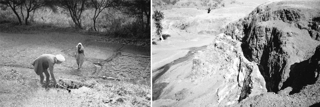 मध्य प्रदेश के झाबुआ जिले के भील आदिवासियों ने अपने इलाके की बनावट के मद्देनजर पहाड़ी सोतों को मोड़कर अपने खेतों को सींचने की पाट प्रणाली विकसित की है। यह जल प्रबंध का व्यावहारिक और पर्यावरण की दृष्टि से अनुकूल तरीका है (गणेश पंगारे / सीएसई)