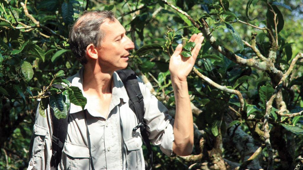 Author Jonathan Drori says public interest in plant stories that cross disciplines inspired him to write the book