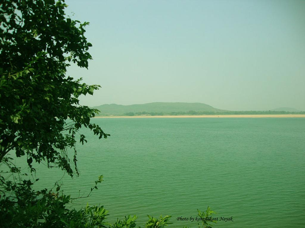 The forest department has carried out plantations in islands and river beds in Mahanadi near Cuttack that has affected the river's morphology and hydraulic dynamics. Credit: Wikimedia Commons