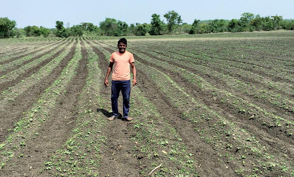 Phool Singh Jadhav of Tekadi village  in Yavatmal district, Maharashtra,  has a five hectare cotton farm, which is full of weeds. He plans to remove weeds manually
