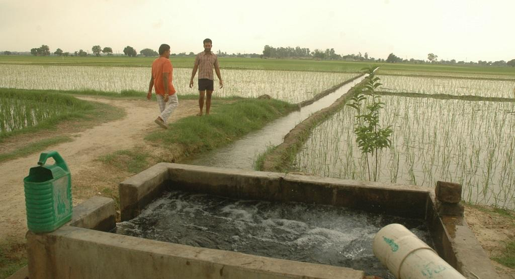 These irrigation project cover 39.07 million hectares in 28 states. Credit: Agnimirh Basu
