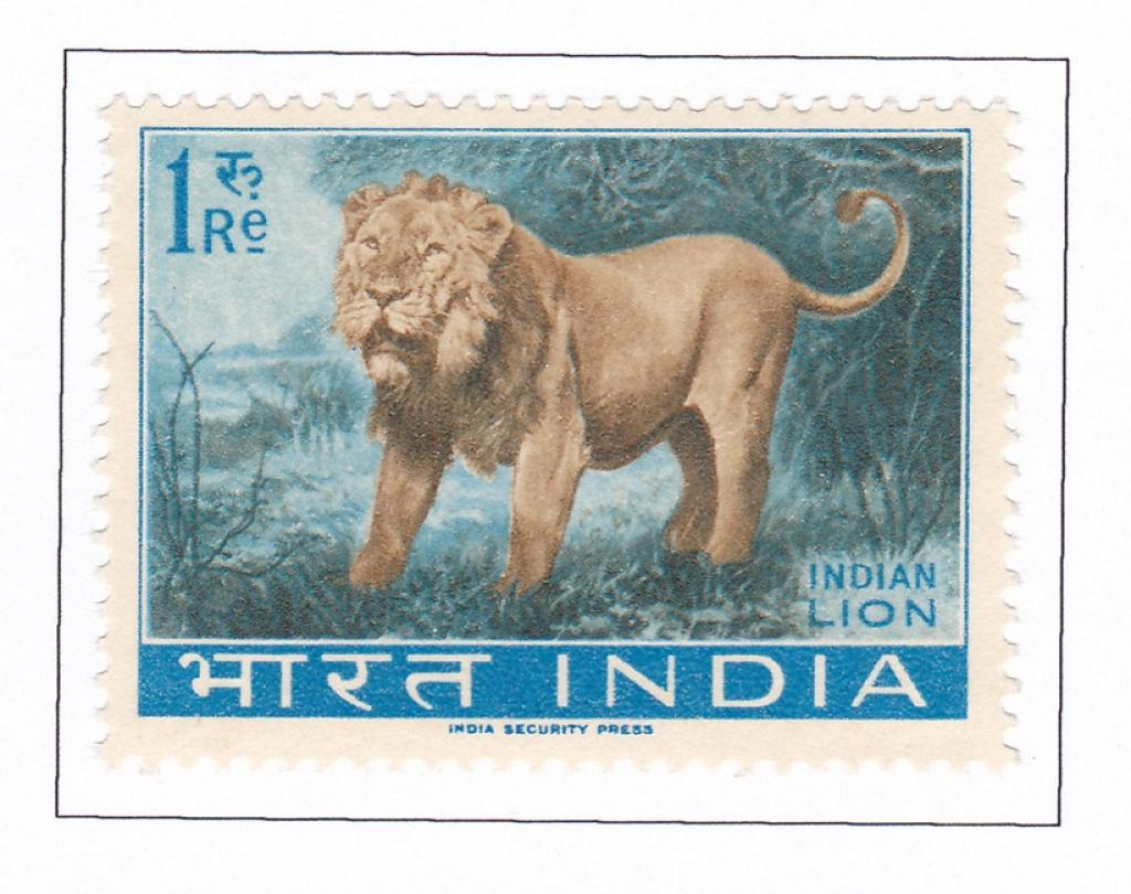 A stamp featuring the Asiatic Lion         Credit: Theodore Baskaran