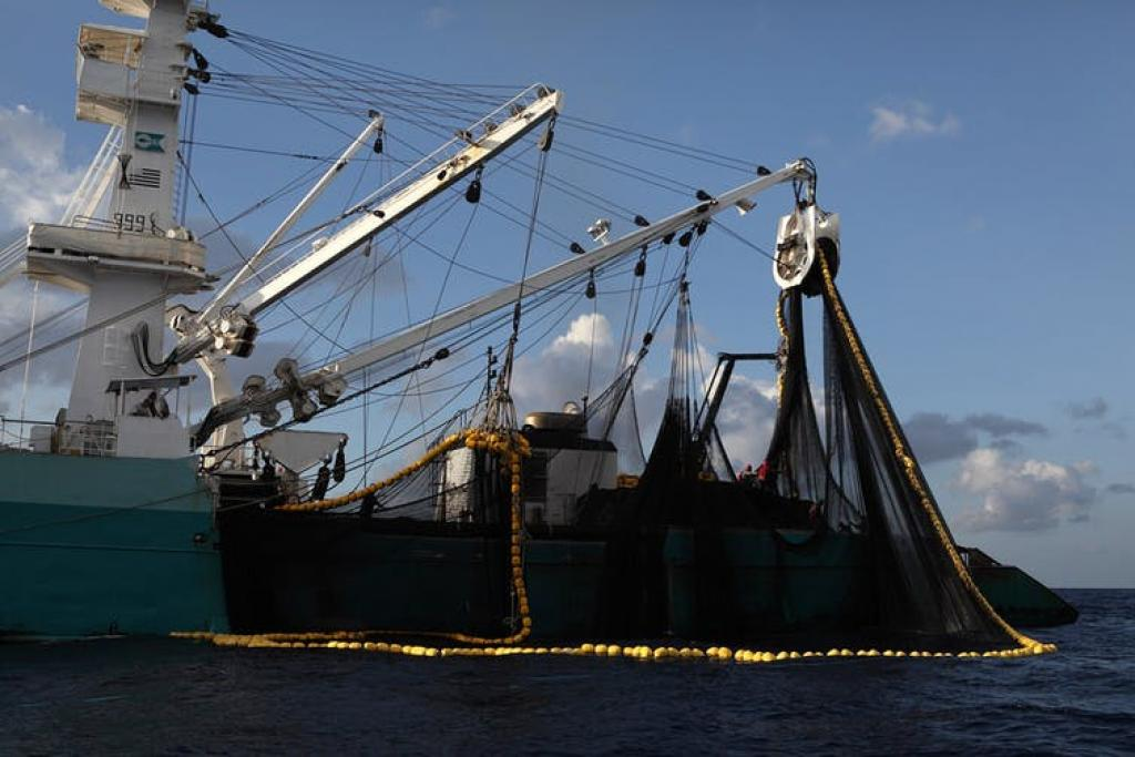 Purse seiner fishing in the Indian Ocean. Footprint estimates do not assess how sustainably resources such as fisheries are managed. Jiri Rezac, CC BY-SA