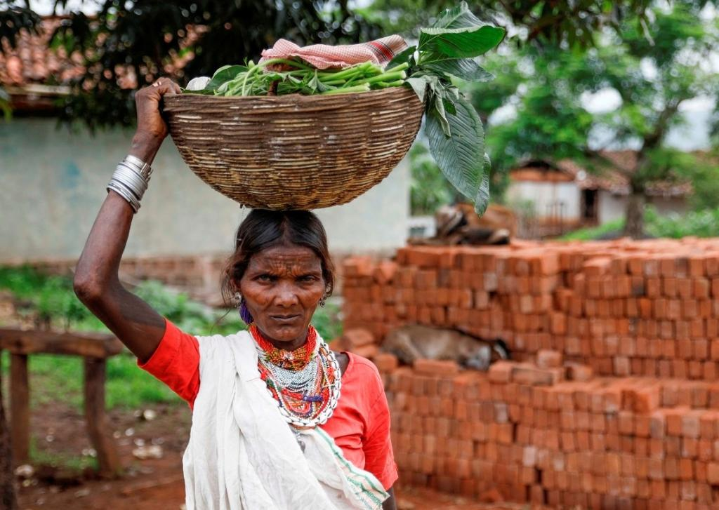 A Baiga tribeswoman returns from forest after collecting some uncultivated food. Baigas are known to consume a wide variety of wild foods, including mushrooms, leafy green vegetables and fruits like fig and thise that grow on the Kusum tree.