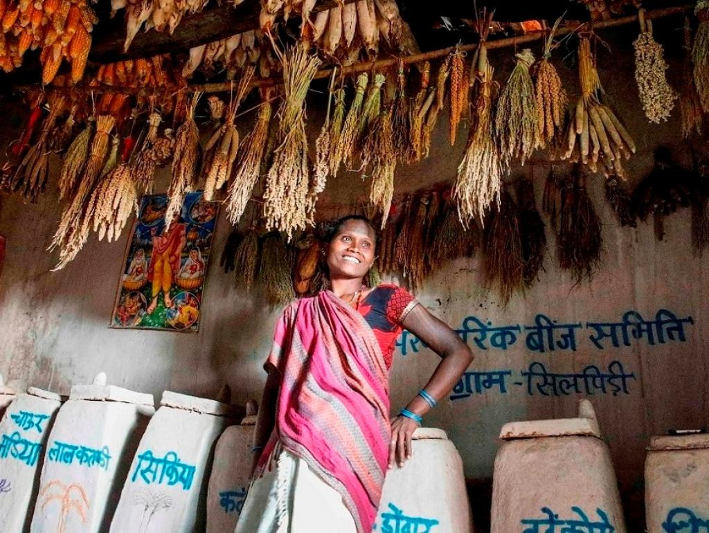 Laheri of Silpidi village in Madhya Pradesh's Dindori district shows a room where Baiga tribals traditionally conserve different kinds of millet seeds. All kinds of seeds are kept in these pots and distributed among villagers at the time of cultivation.