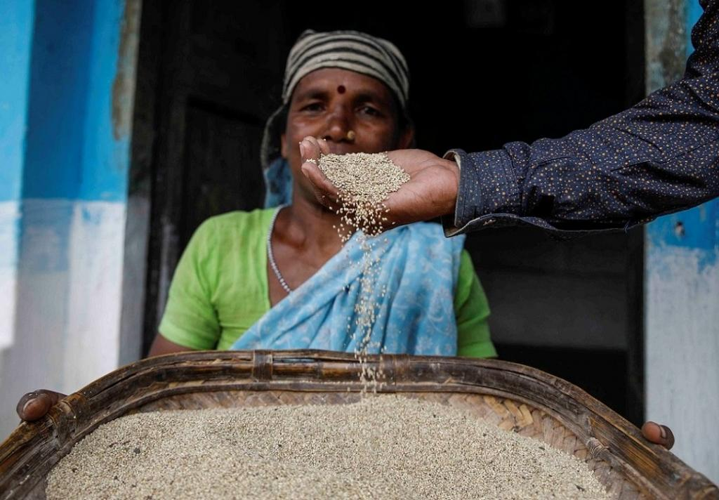 A Gonda tribal woman from Mandla district in Madhya Pradesh shows Sawa millet, which is one of the most digestible and non-allergenic grain.