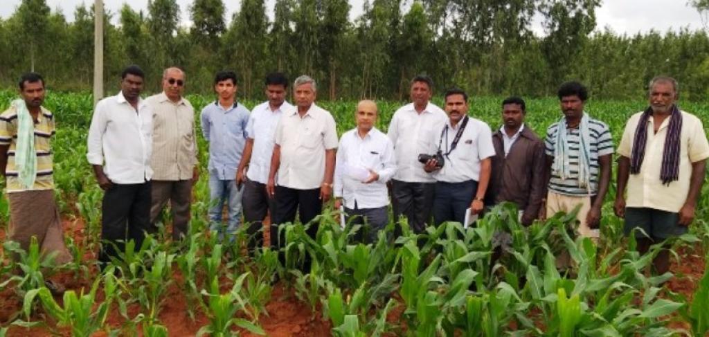 फील्ड सर्वे करते हुए बंगलुरु स्थित यूनिवर्सिटी ऑफ एग्रीकल्चर साइंसेज की टीम