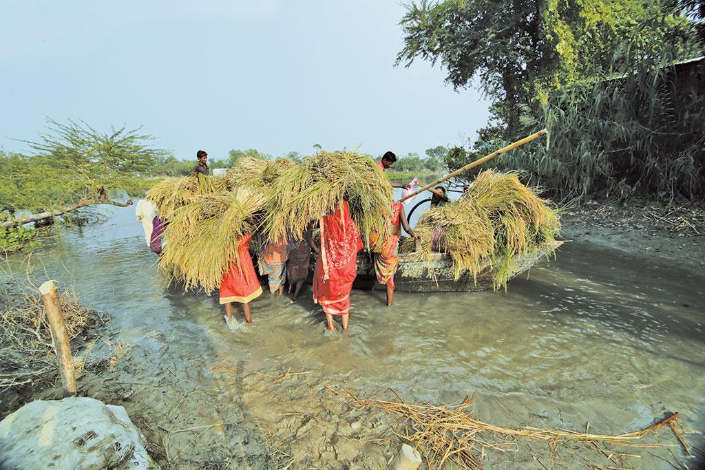 गंगा के तटीय क्षेत्रों में परिवहन के साधन के तौर पर नावों का इस्तेमाल किया जाता है, जो ग्रामीण अर्थव्यवस्था का एक महत्वपूर्ण हिस्सा है
