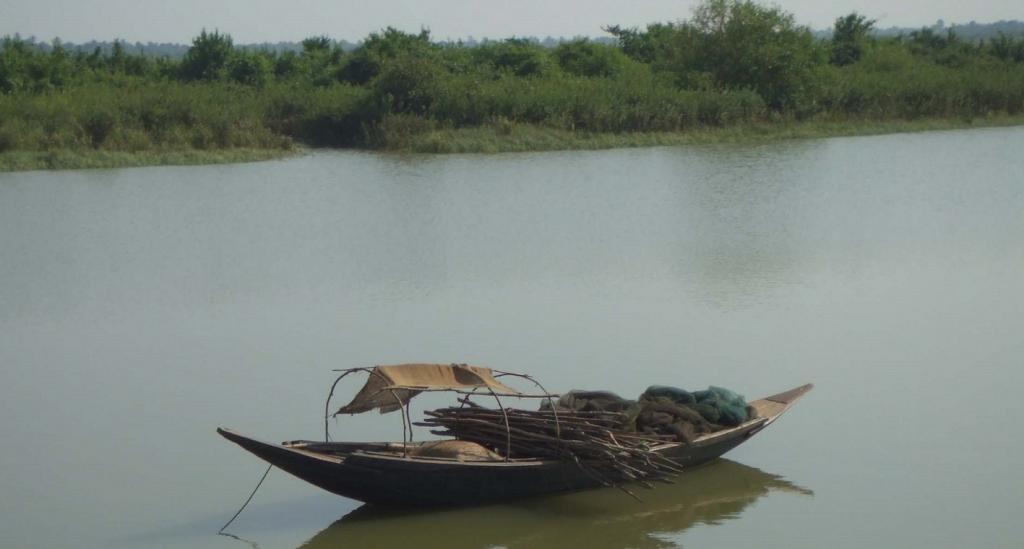 mangrove---benjamin-mackinnon