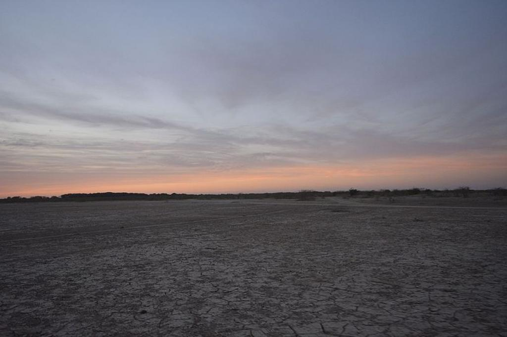 The sun sets over the Banni Grasslands in Kutch      Credit: Wikimedia Commons