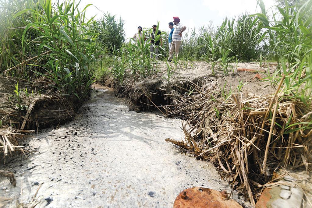पंजाब के सैलाखुर्द के पास चल रही मिल पानी और हवा खराब कर रही है जिसके कारण सैकड़ों जानें जा चुकी हैं