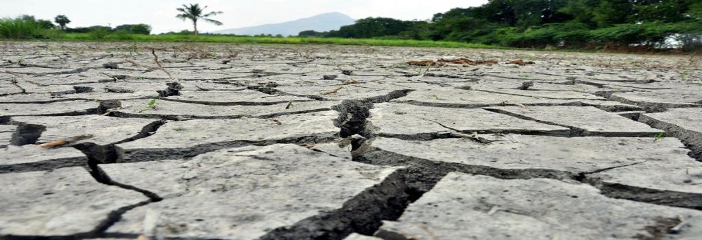 Drought Maharashtra