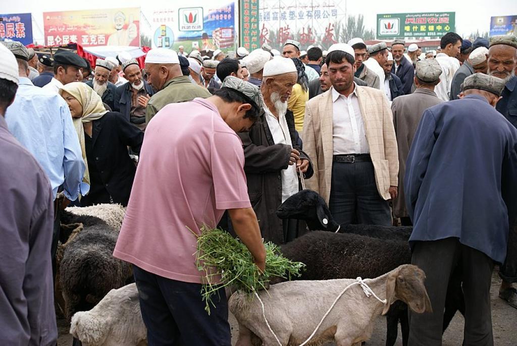 Uyghur men at a livestock market in Kashgar, Xinjiang       Credit: Wikimedia Commons