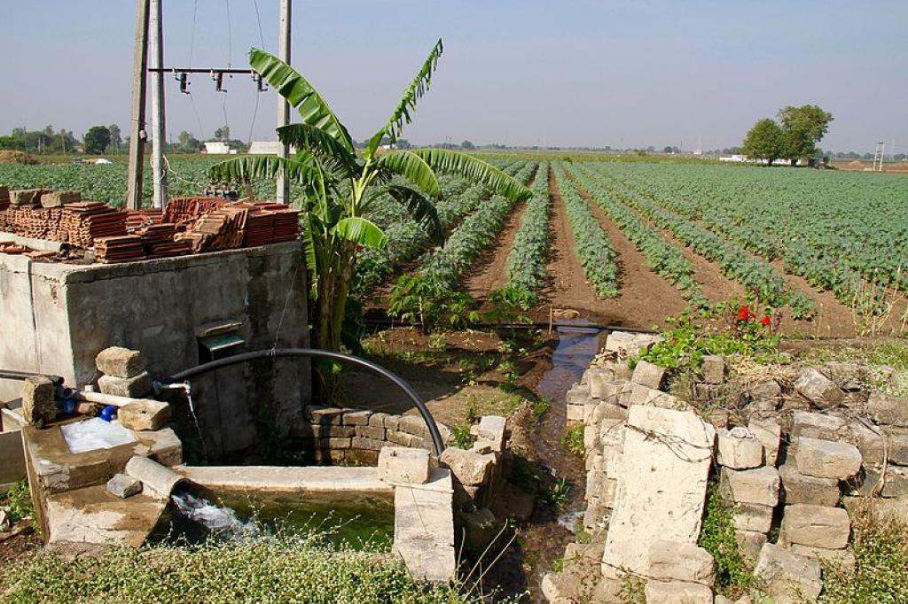 A tubewell near a field in Gujarat.     Credit: Wikimedia Commons