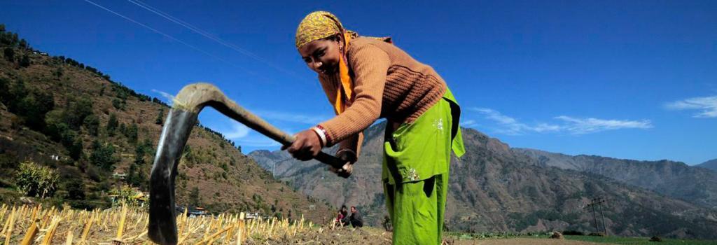 MGNREGA is failing: 10 reasons why