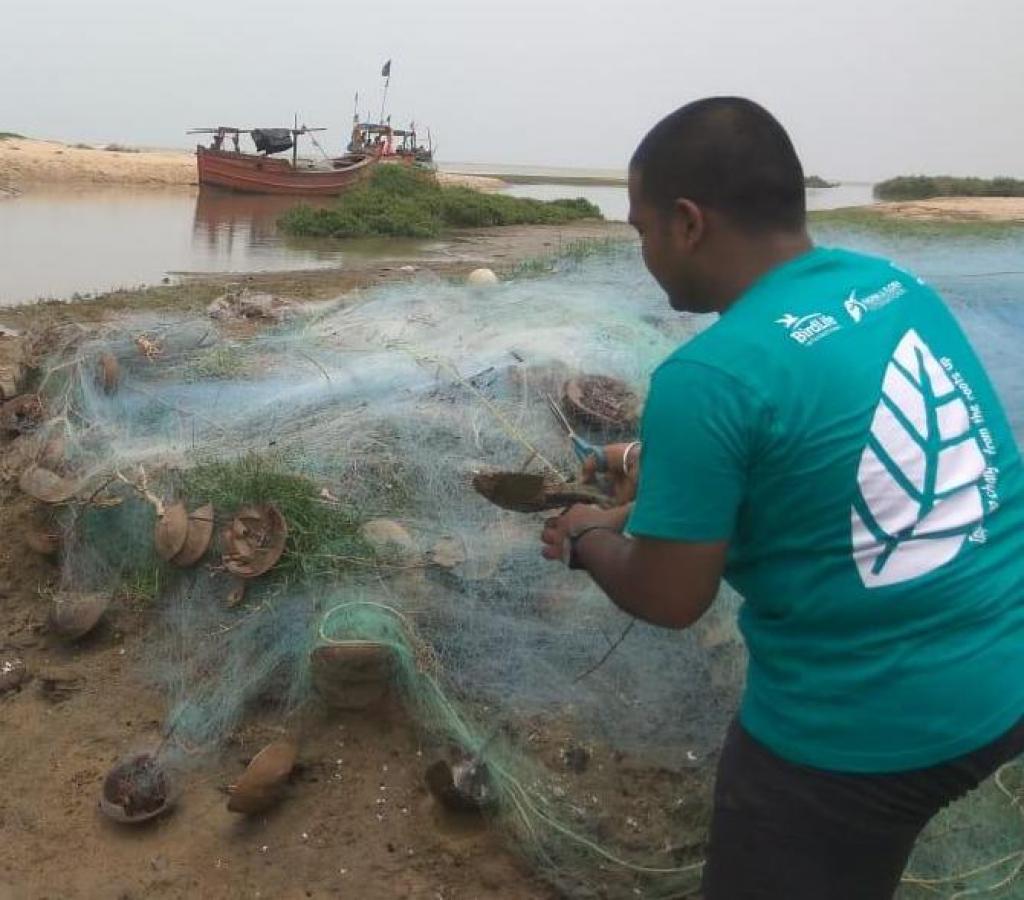 Activists save horseshoe crabs stuck in a fishing net. Credit: Ashis Senapati