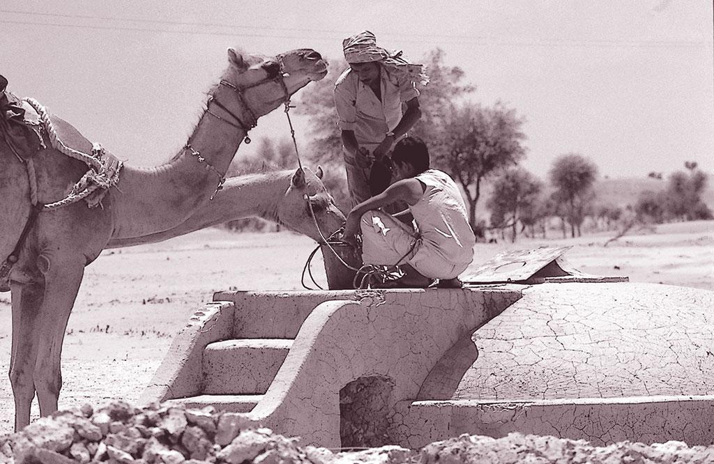 न्यांगली के अनेक कुंड उपेक्षित हैं पर राजस्थान नहर से पानी की अनियमित आपूर्ति के चलते लोगों ने इन्हें पूरी तरह त्यागा नहीं है (अनिल अग्रवाल/ सीएसई)