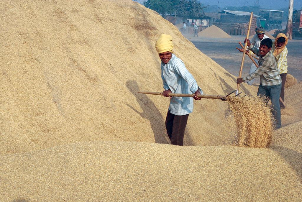 किसानों ने आर्थिक तंगी के चलते खेती छोड़ दी