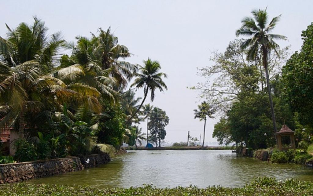 'Climate change one of many reasons for Kerala's receding groundwater table'