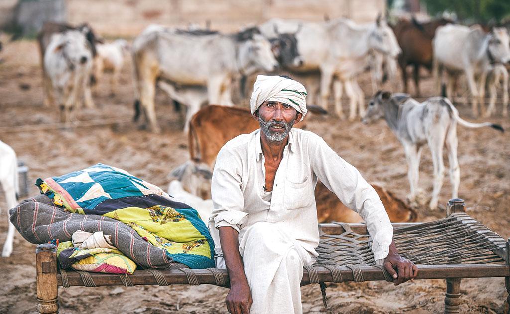 अलवर जिले के साहूवास गांव में रहने वाले  सुब्बा खान पहले हर दिन लगभग 300 लीटर दूध का व्यापार करते थे जो अब घटकर 30-40 लीटर दूध का रह गया है