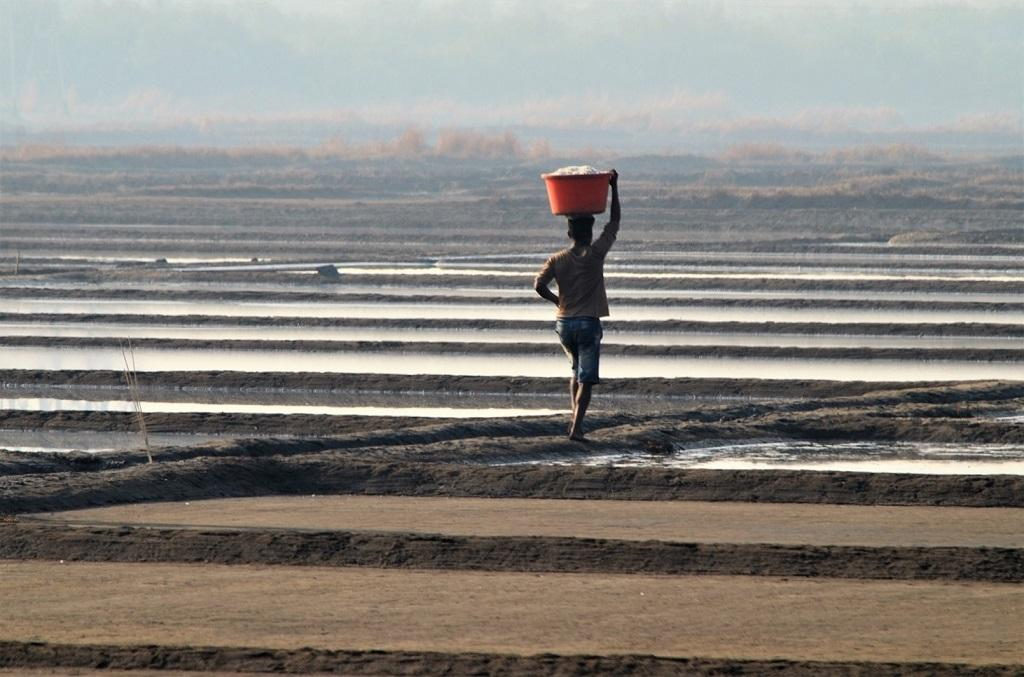 Many marginal farmers head to Mumbai's saltpans in the summer when farming is not feasible back home. In the absence of options, it's one of the ways to make a living, they say. Photo: Gajanan Khergamker