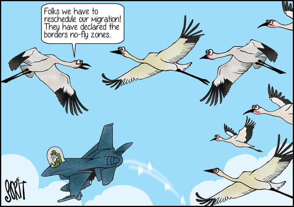 Simply put: Bird migration hit by no-fly zone declaration